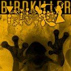 PHYLLOMEDUSA Birdkiller album cover