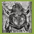 PHYLLOMEDUSA Bryophryne Fermentation album cover