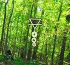 PHYLLOMEDUSA Lycopodiopsidd Sidt album cover