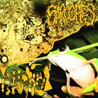 PHYLLOMEDUSA Sarcoptes vs Phyllomedusa album cover