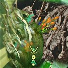 PHYLLOMEDUSA Ylid album cover