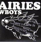 PINK FAIRIES Chinese Cowboys album cover