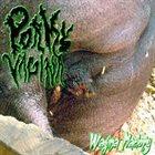 PORKY VAGINA Wagina Maciory album cover