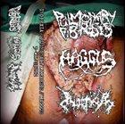 PULMONARY FIBROSIS Haggus / Pulmonary Fibrosis / Inopexia album cover