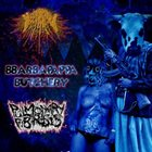 PULMONARY FIBROSIS Meningococcemia Fecal / Bbarbapappa Butchery / Pulmonary Fibrosis album cover