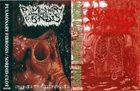 PULMONARY FIBROSIS Pulmonary Fibrosis / Sordid Clot album cover