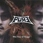 PURE The Flap Of Wings album cover