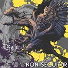 RAIJU Non Sequitur album cover