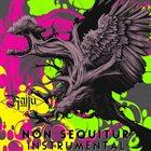 RAIJU Non Sequitur (Instrumental) album cover