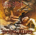 RECTAL SMEGMA Licking a Leper album cover