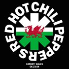 RED HOT CHILI PEPPERS Cardiff, Wales (6/23/04) album cover
