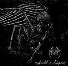 REVOLTER Enshrouded in Deception album cover
