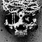 RISE AND FALL Into Oblivion album cover