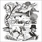 RUBYCONE Fish​-​Horse album cover