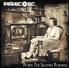 RUBYCONE Pictures of Susceptible Housewives album cover