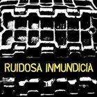 RUIDOSA INMUNDICIA Discografia 2004-2010 album cover