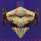 RUINS Pallasch album cover
