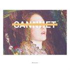 SANNHET Revisionist album cover