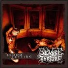 SEVERE TORTURE Bloodletting album cover