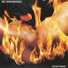 SEX MACHINEGUNS Burning Hammer album cover