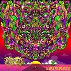 SHAMAN ENFERMO El viaje astral del Cuy album cover