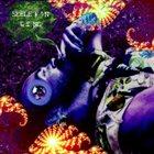 SKELETON GONG Eskimo Wizards & The Louisiana Swamp Priests album cover