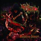 SKULL COLLECTOR Disfigured Insanity album cover