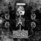 SLUND Brain Dysfunction album cover