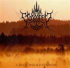 STORMHEIT Caelic Weold Finnum album cover