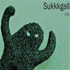 SUKKKGALL 23% album cover