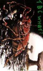 T.B.C. WHAT? Angriff Der Killerkakerlaken album cover