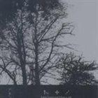 TENHORNEDBEAST Ten Stars - Ten Horns album cover