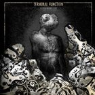 TERMINAL FUNCTION Clockwork Sky album cover