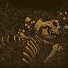 THRALL Aokigahara Jukai album cover
