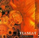 TIAMAT Wildhoney / Gaia album cover