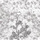TITAN The Chrysanthemum Pledge album cover