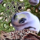 TOAD BIRTH Envisage A Collembolans Catenator (with Adam Rotella) album cover