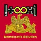 !T.O.O.H.! Democratic Solution album cover