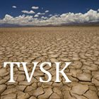 TVSK From The Ashes album cover