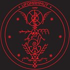 UFOMAMMUT XV: Magickal Mastery Live album cover