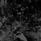 UNEARTHLY TRANCE Primitive Man / Unearthly Trance album cover