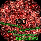 VARIOUS ARTISTS (GENERAL) 100 Goregrind Porngore Cybergrind Bands Compilation Vol. 2 album cover