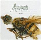 VENOM Bitten album cover