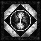 VIELIKAN Back to the Black Marsh album cover