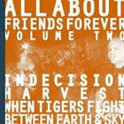 WHEN TIGERS FIGHT All About Friends Forever Volume Two album cover