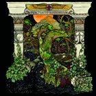 WINO Punctuated Equilibrium album cover
