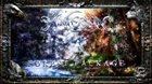 WINTERSUN The Forest Package album cover
