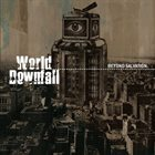 WORLD DOWNFALL Beyond Salvation album cover