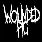 WOUNDED PIG CRUST! Vol. 1 Live from the Eastside album cover