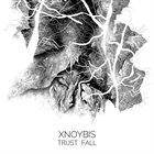 XNOYBIS Trust Fall album cover